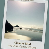 Clear as Mud and Other Gummer-Uppers