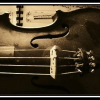 Dusty cello II
