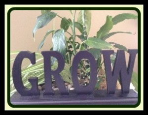 How-to-Grow-a-Life-pix-II-300x2341