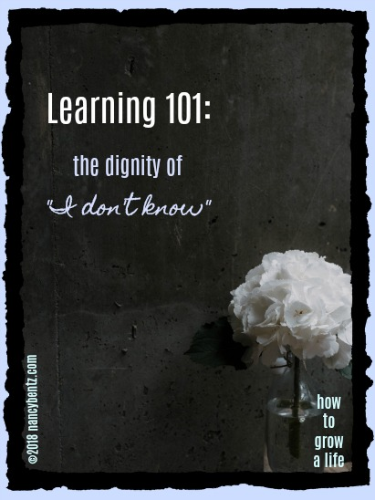"Learning 101: the dignity of ""I don't know"""