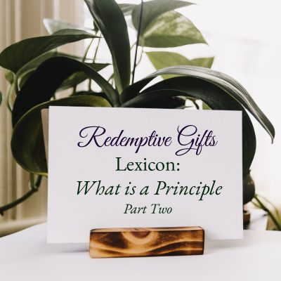 Redemptive Gifts Lexicon: What is a Principle, Part Two