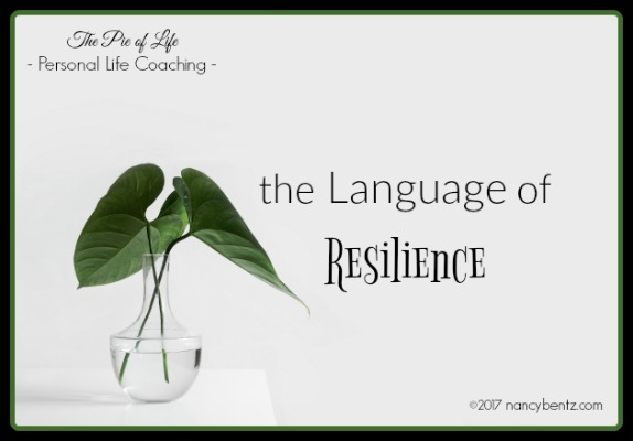 The Language of Resilience