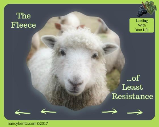 The Fleece of Least Resistance